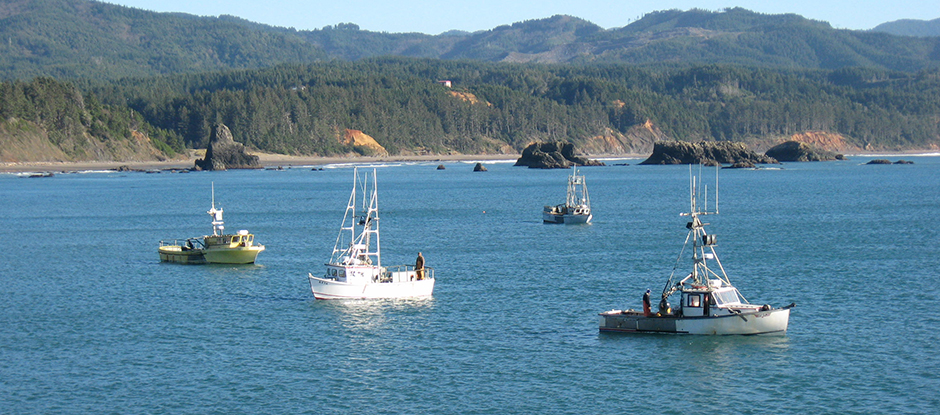 Boats at Port Orford